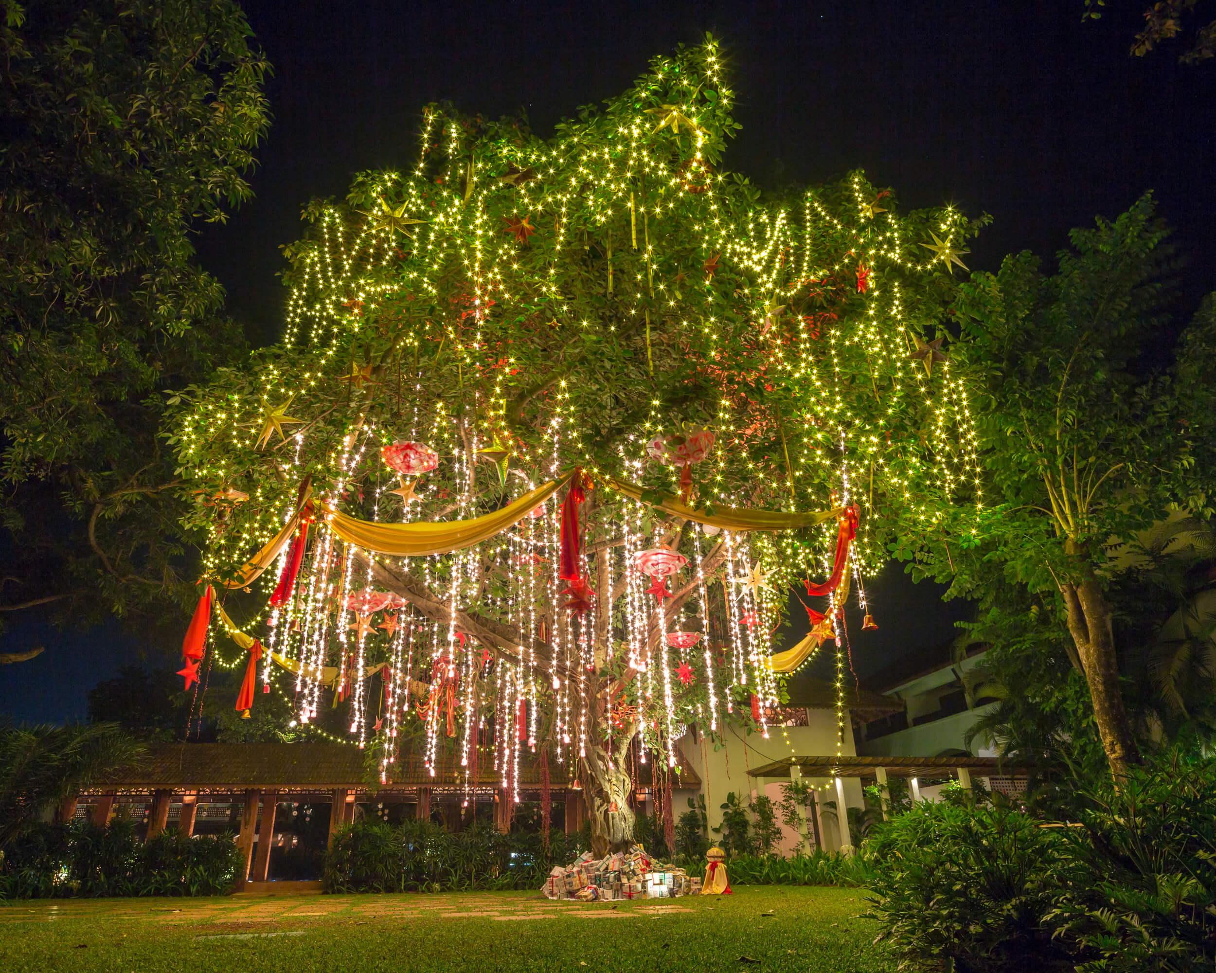 Christmas tree in Goa