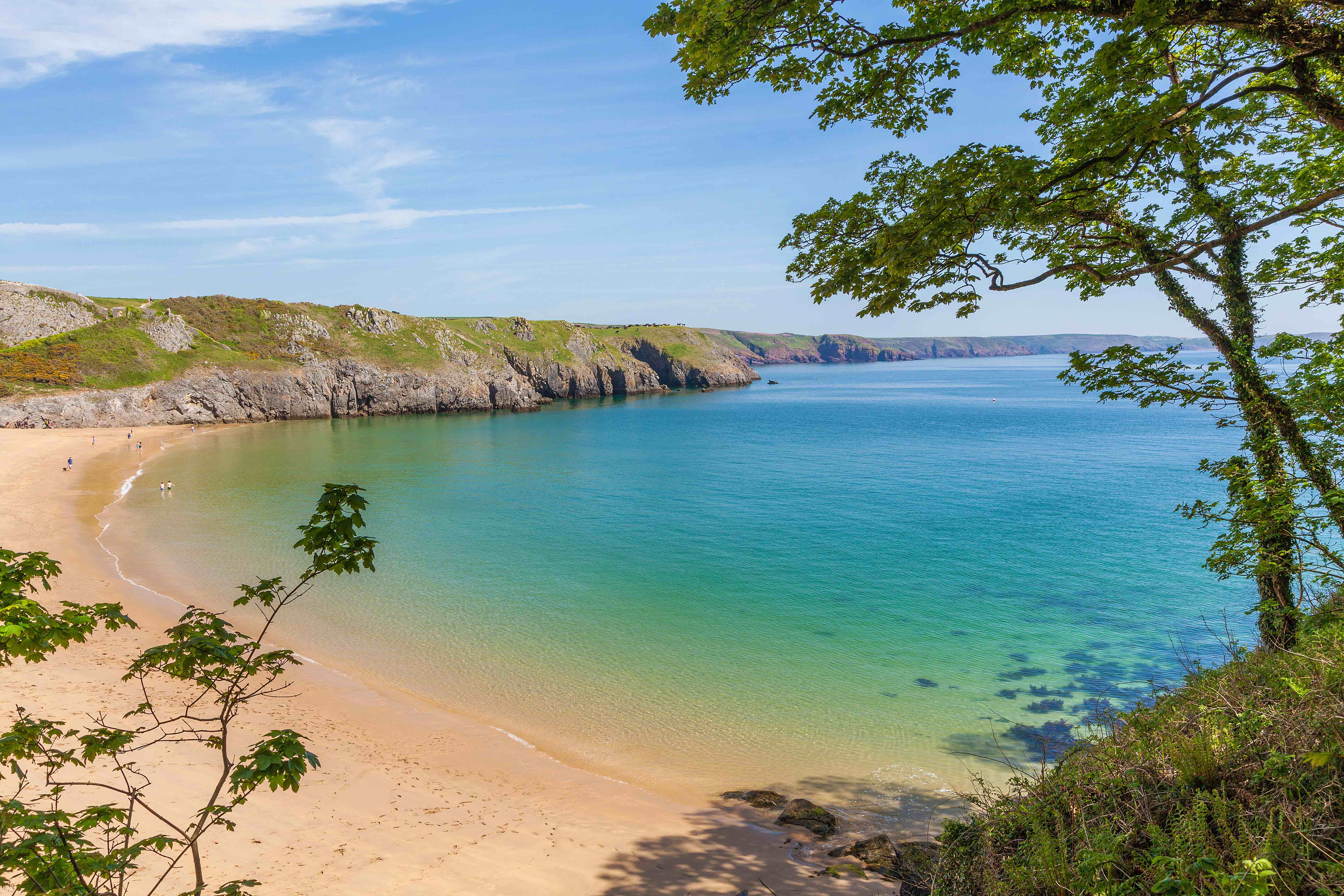 The most beautiful beach in the UK? Barafundle Bay in Pembrokeshire, Wales.